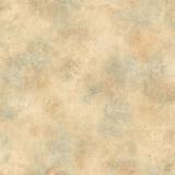 CK2570 Scroll Texture
