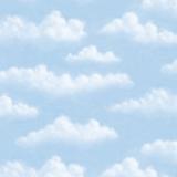 CT4707 Puffy Clouds