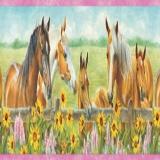 GIR92073B Harmony Horses