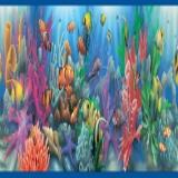 GIR92341B Aquarium